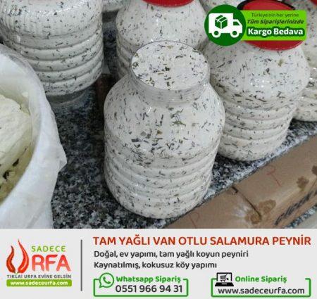 Van Otlu Salamura Peynir